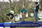 Пчелари излизат на национален протест