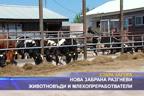 Нова забрана разгневи животновъди и млекопреработватели