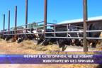 Фермер е категоричен, че ще избият животните му без причина