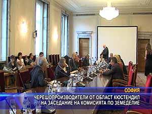 Черешопроизводители от област Кюстендил на заседание на комисията по земеделие