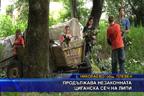 Продължава незаконната циганска сеч на липи