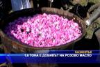 1,6 тона е добивът на розово масло