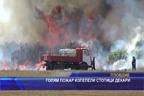 Голям пожар изпепели стотици декари