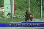 Започнаха да глобяват каруцари в Сливен