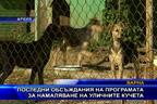 Последни обсъждания на програмата за намаляване на уличните кучета