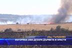 Изгоряха 2000 декара дървета и храсти