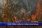 Сухи треви и храсти горяха край Враца