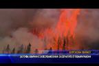 Започва аварийно залесяване в най-засегнатите от пожари райони