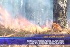 Летните пожари са заличили над три хиляди декара гори