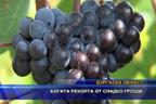 Богата реколта от сладко грозде
