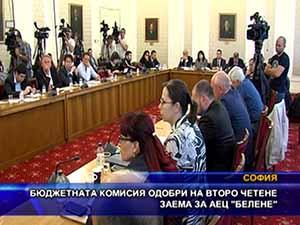 """Бюджетната комисия одобри на второ четене заема за АЕЦ """"Белене"""""""