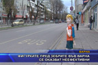 Фигурките пред зебрите във Варна се оказват неефективни