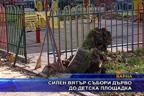 Силен вятър събори дърво до детска площадка