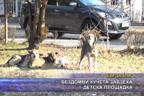 Бездомни кучета завзеха детска площадка