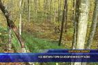432 хектара гори са изсечени в Бургаско