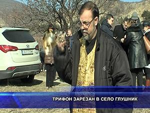 Трифон Зарезан в село Глушник