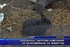 Зоопаркът започва кампания за осиновяване на животни