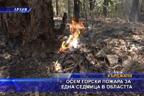 Осем горски пожара за една седмица в областта