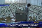 Дребни и средни земеделски стопани се надяват на държавна подкрепа