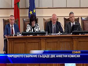 Народното събрание създаде две анкетни комисии