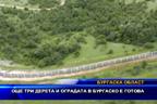 Още три дерета и оградата в Бургаско е готова