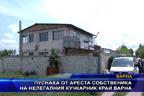 Пуснаха от ареста собственика на нелегалния кучкарник край Варна