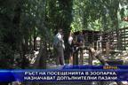 Ръст на посещенията в зоопарка, назначават допълнителни пазачи