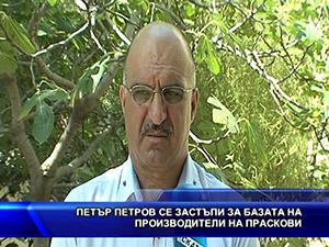 Петър Петров се застъпи за базата на производители на праскови