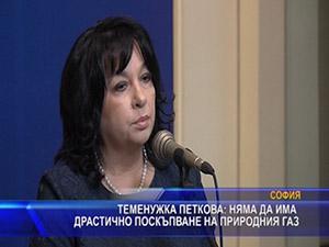 Теменужка Петкова - няма да има драстично поскъпване на природния газ