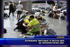 """Булевард """"Витоша"""" е лесна цел за терористичен акт"""