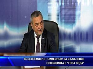 """Вицепремиерът Симеонов: За съжаление опозицията е """"гола вода"""""""