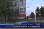 """Адвокати и възпитаници на училище """"Николай Хайтов"""" засадиха заедно дръвчета във Варна"""
