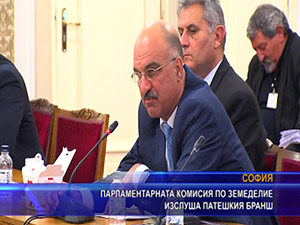 Парламентарната комисия по земеделие изслуша патешкия бранш