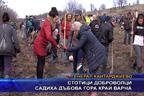 Стотици доброволци садиха дъбова гора край Варна