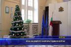 Елха на доброто за втора година в Бургас
