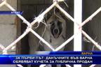За първи път: данъчните във Варна обявяват кучета за публична продан