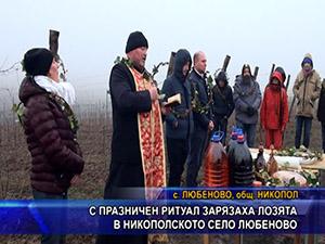 С празничен ритуал зарязаха лозята в никополското село Любеново