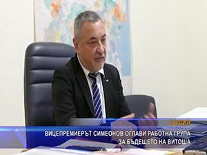 Вицепремиерът Симеонов оглави работна група за бъдещето на Витоша