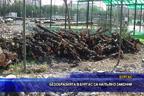 Безобразията в Бургас са напълно законни