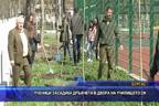 Ученици засадиха дръвчета в двора на училището си