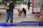 Липсва гражданска позиция в решаването на проблема с бездомните кучета