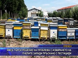 НФСБ търси решение на проблема с измирането на пчелите заради  пръскане с пестициди