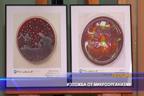 Изложба от микроорганизми