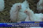 Временно е забранена продажбата на живи птици във варненско