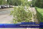 Ураганни ветрове и порои в Бургас