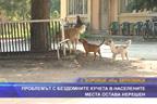 Проблемът с бездомните кучета в населените места остава нерешен