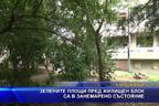 Зелените площи пред жилищен блок са в занемарено състояние