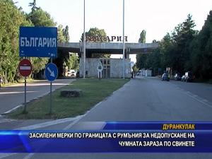 Засилени мерки по границата с Румъния за недопускане на чумната зараза по свинете