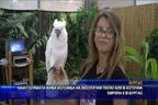 Най-голямата жива изложба на екзотични папагали в източна Европа е в Бургас