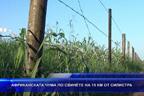 Африканската чума по свинете на 15 км от Силистра
